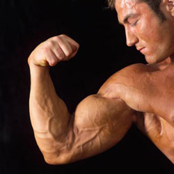 Mooie biceps