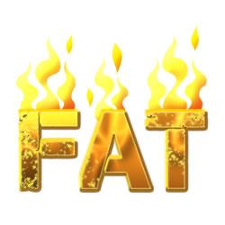 Waarheid van Fatburners