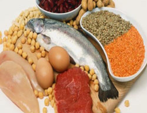 Waarheid van Voeding – Eiwitten