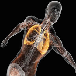 Zwaarder trainen met een betere ademhaling