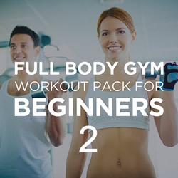 Full Body Workout Beginner 2
