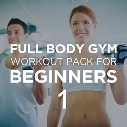 Full Body Workout Beginner 1