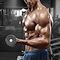 how to build a perfect shoulder