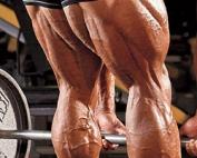 Maximale Training van je Hamstrings
