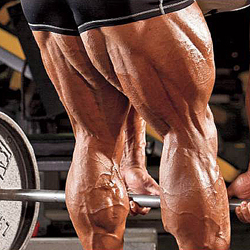 Maximale Training van je Hamstrings