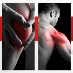 Acelera tu recuperación muscular