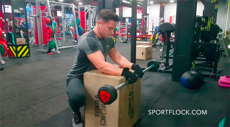 Palms-Down Barbell Wrist Curl over a Bench