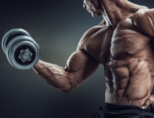 Trainen van Grote Biceps